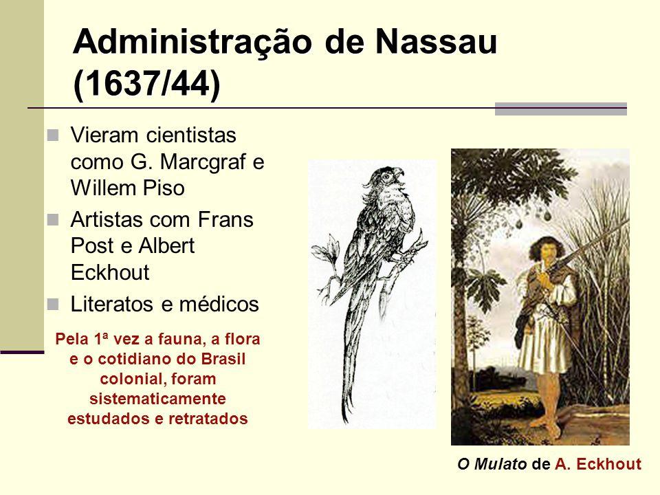 Administração de Nassau (1637/44) Vieram cientistas como G. Marcgraf e Willem Piso Artistas com Frans Post e Albert Eckhout Literatos e médicos Pela 1