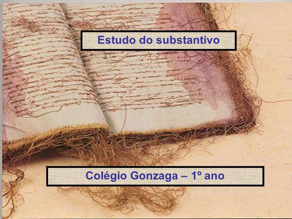 Estudo do substantivo Colégio Gonzaga – 1º ano