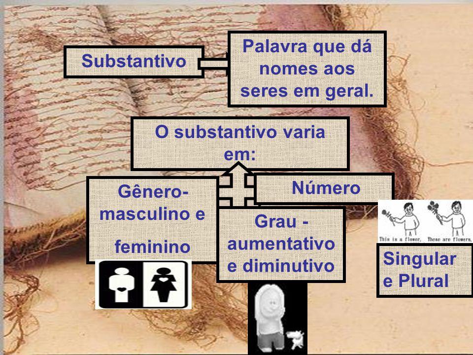 Substantivo Palavra que dá nomes aos seres em geral. O substantivo varia em: Gênero- masculino e feminino Grau - aumentativo e diminutivo Número Singu
