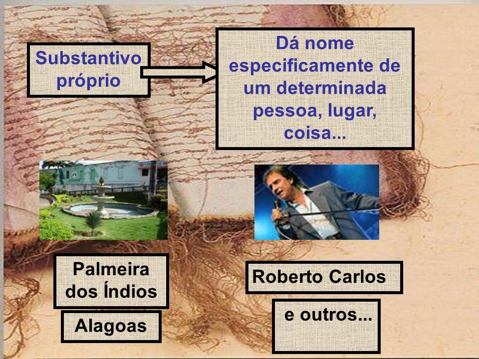 Substantivo próprio Dá nome especificamente de um determinada pessoa, lugar, coisa... Palmeira dos Índios Alagoas Roberto Carlos e outros...