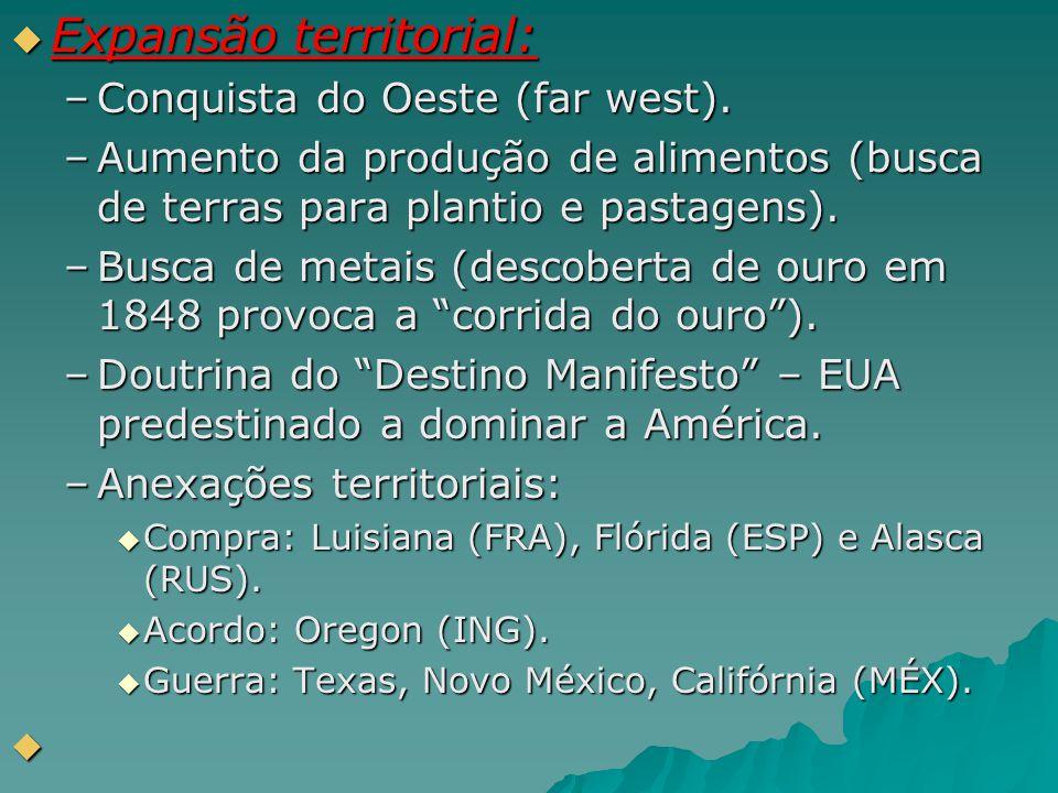  Expansão territorial: –Conquista do Oeste (far west). –Aumento da produção de alimentos (busca de terras para plantio e pastagens). –Busca de metais