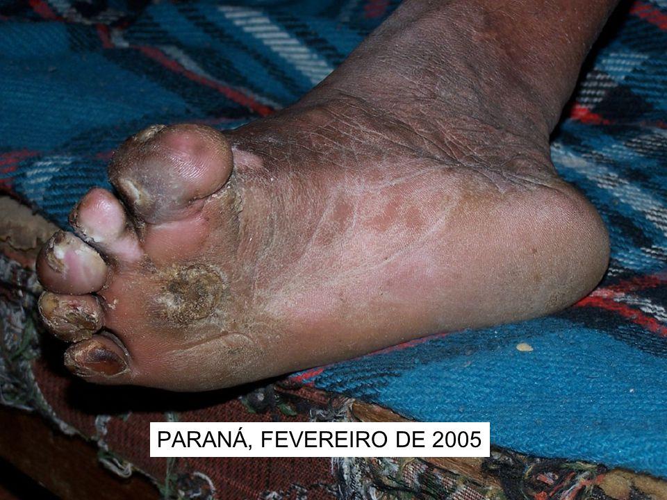 PARANÁ, FEVEREIRO DE 2005