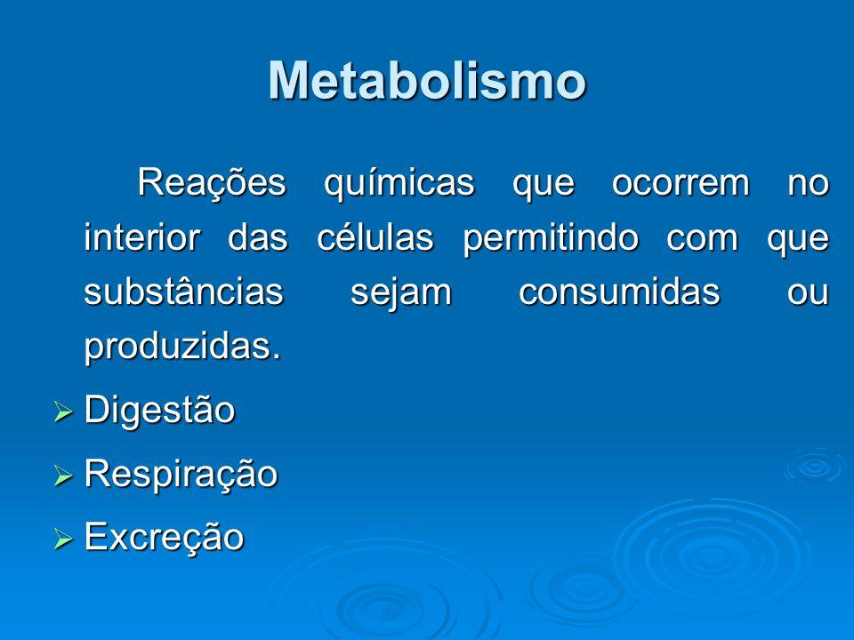 Metabolismo Reações químicas que ocorrem no interior das células permitindo com que substâncias sejam consumidas ou produzidas.  Digestão  Respiraçã