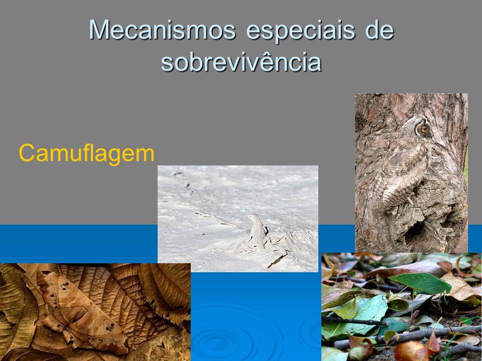 Mecanismos especiais de sobrevivência Camuflagem