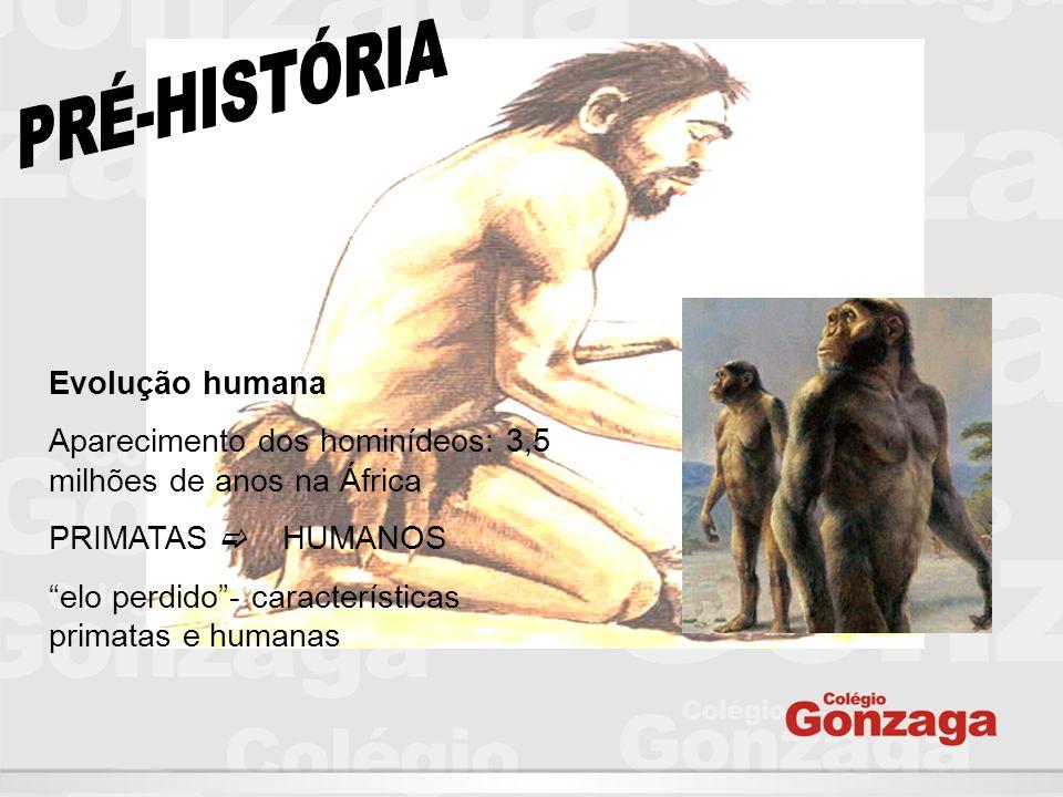 """Evolução humana Aparecimento dos hominídeos: 3,5 milhões de anos na África PRIMATAS  HUMANOS """"elo perdido""""- características primatas e humanas"""