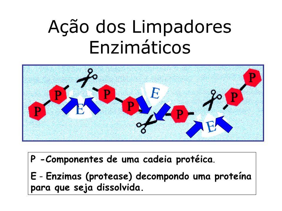 Ação dos Limpadores Enzimáticos P -Componentes de uma cadeia protéica. E - Enzimas (protease) decompondo uma proteína para que seja dissolvida.