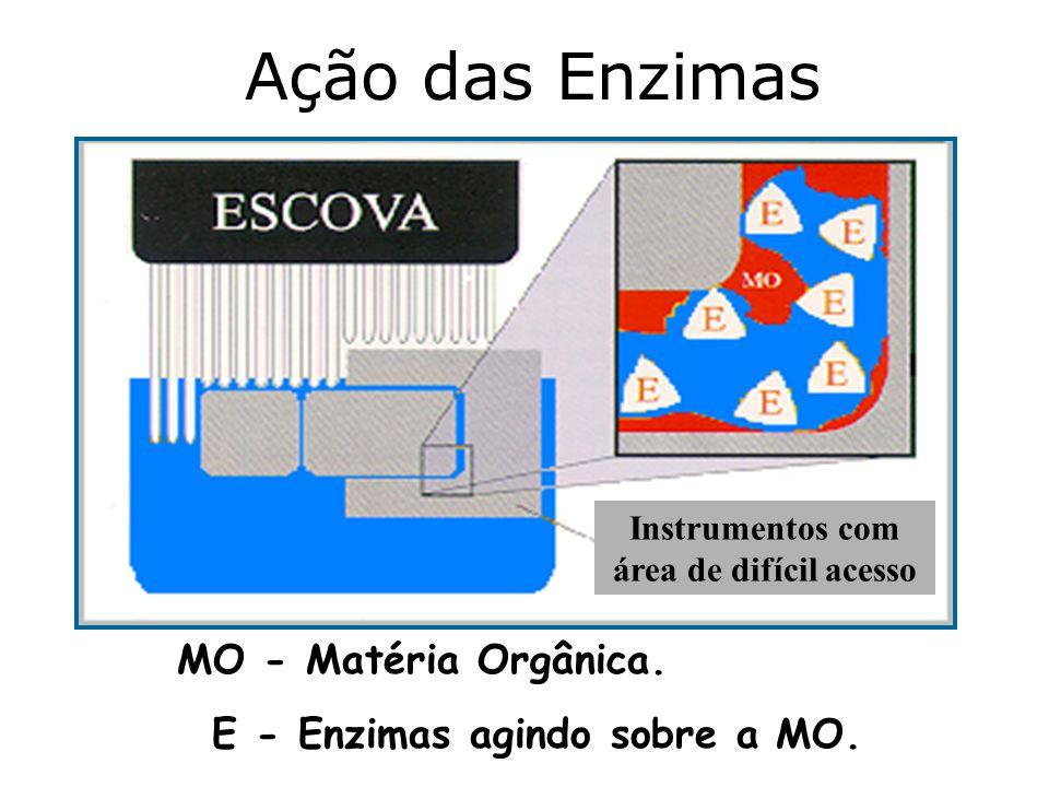 Ação das Enzimas Instrumentos com área de difícil acesso MO - Matéria Orgânica. E - Enzimas agindo sobre a MO.