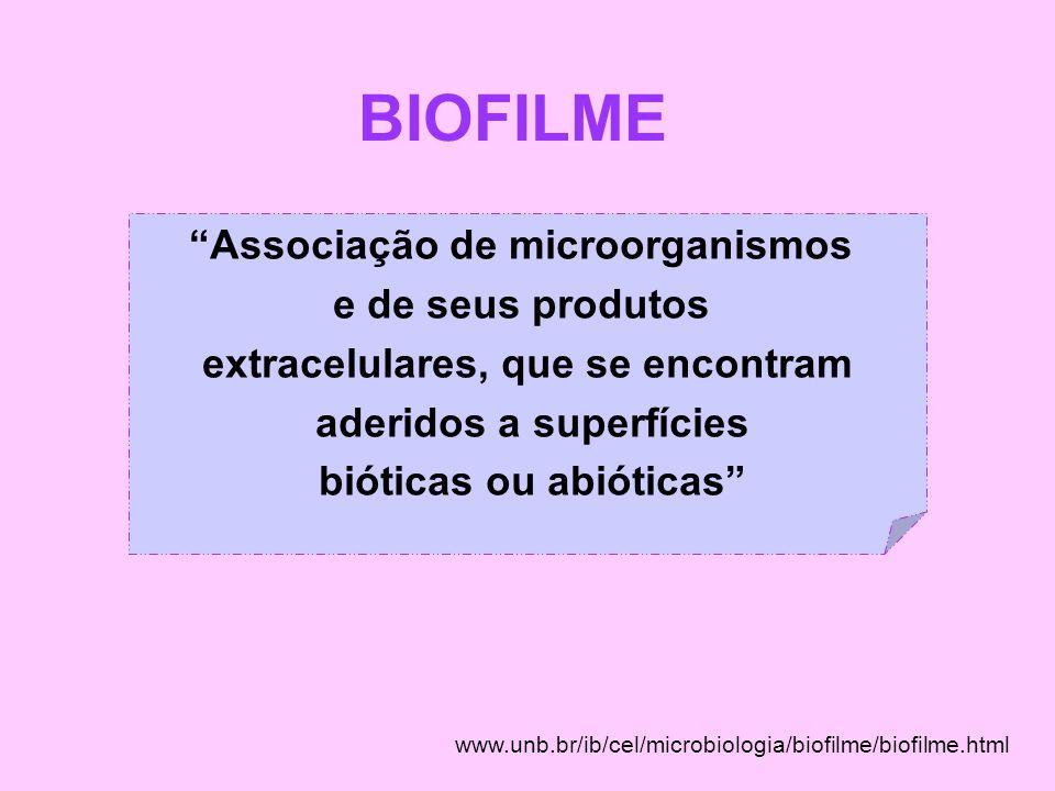 """BIOFILME www.unb.br/ib/cel/microbiologia/biofilme/biofilme.html """"Associação de microorganismos e de seus produtos extracelulares, que se encontram ade"""