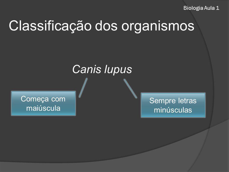 Biologia Aula 1 Classificação dos organismos Canis lupus Sempre letras minúsculas Começa com maiúscula