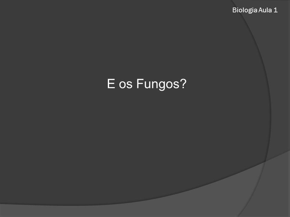 Biologia Aula 1 E os Fungos?