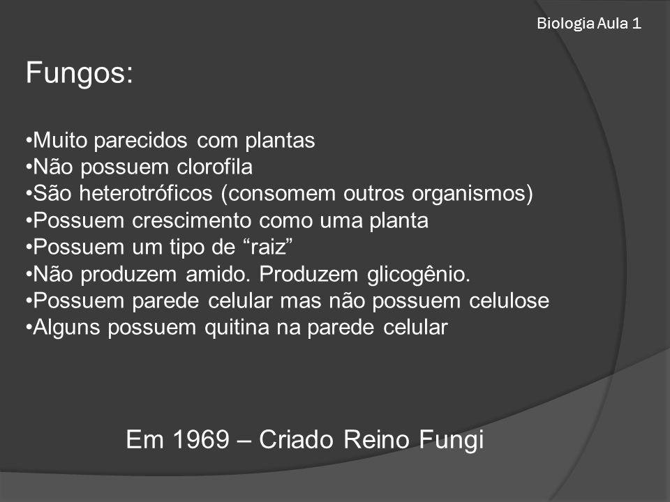 Biologia Aula 1 Fungos: Muito parecidos com plantas Não possuem clorofila São heterotróficos (consomem outros organismos) Possuem crescimento como uma planta Possuem um tipo de raiz Não produzem amido.