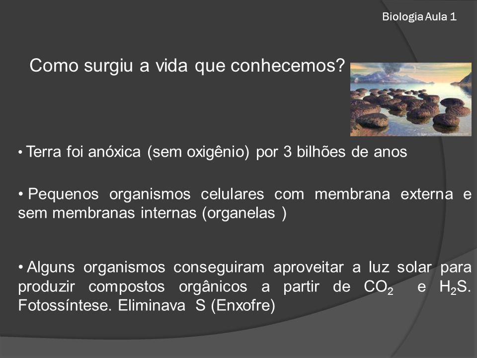Biologia Aula 1 Como surgiu a vida que conhecemos? Terra foi anóxica (sem oxigênio) por 3 bilhões de anos Pequenos organismos celulares com membrana e