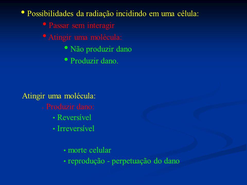 Possibilidades da radiação incidindo em uma célula: Passar sem interagir Atingir uma molécula: Não produzir dano Produzir dano.