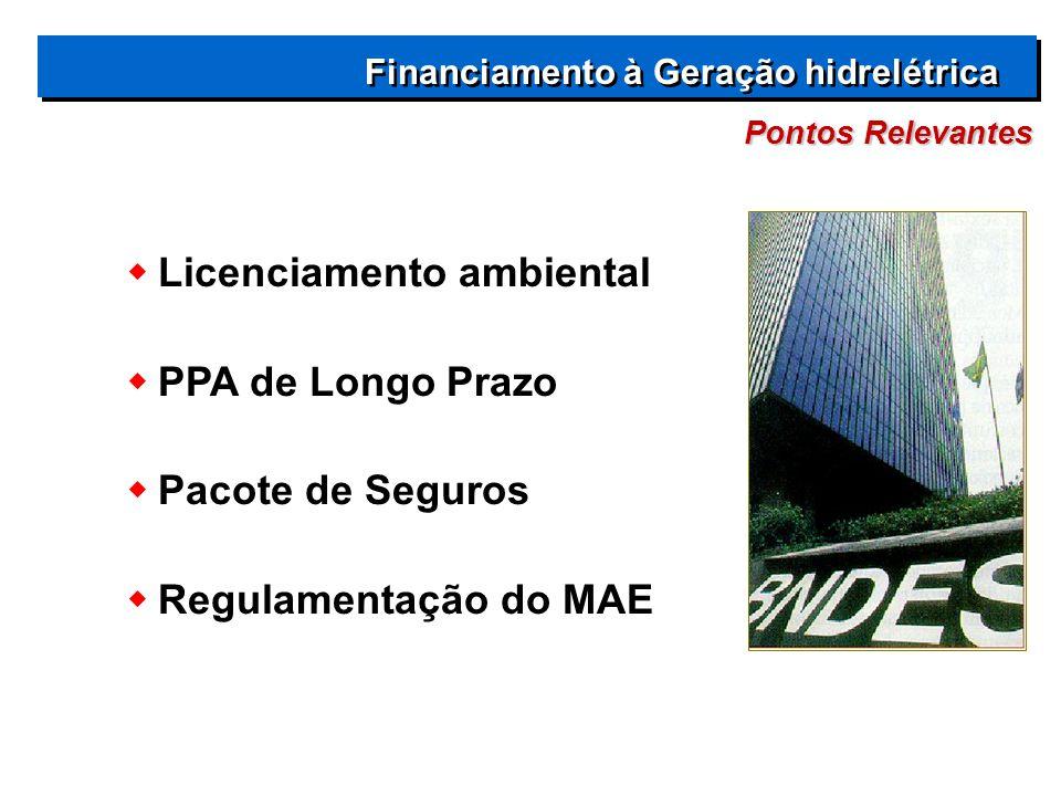  Licenciamento ambiental  PPA de Longo Prazo  Pacote de Seguros  Regulamentação do MAE Pontos Relevantes Financiamento à Geração hidrelétrica