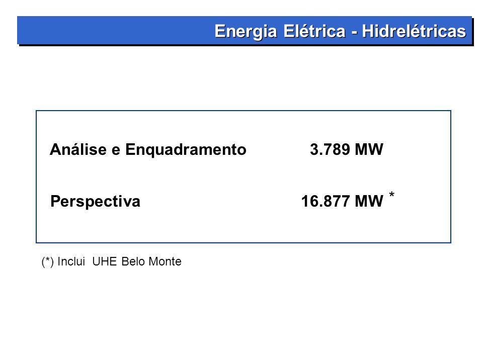 Energia Elétrica - Hidrelétricas Análise e Enquadramento3.789 MW Perspectiva16.877 MW (*) Inclui UHE Belo Monte *
