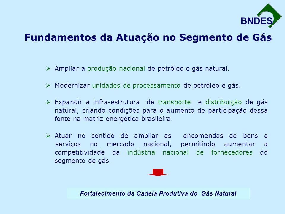 BNDES Fundamentos da Atuação no Segmento de Gás  Ampliar a produção nacional de petróleo e gás natural.  Modernizar unidades de processamento de pet