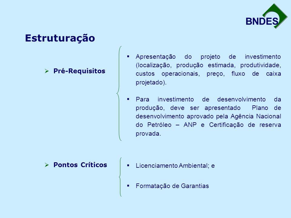 BNDES Estruturação  Pré-Requisitos  Pontos Críticos  Apresentação do projeto de investimento (localização, produção estimada, produtividade, custos operacionais, preço, fluxo de caixa projetado).