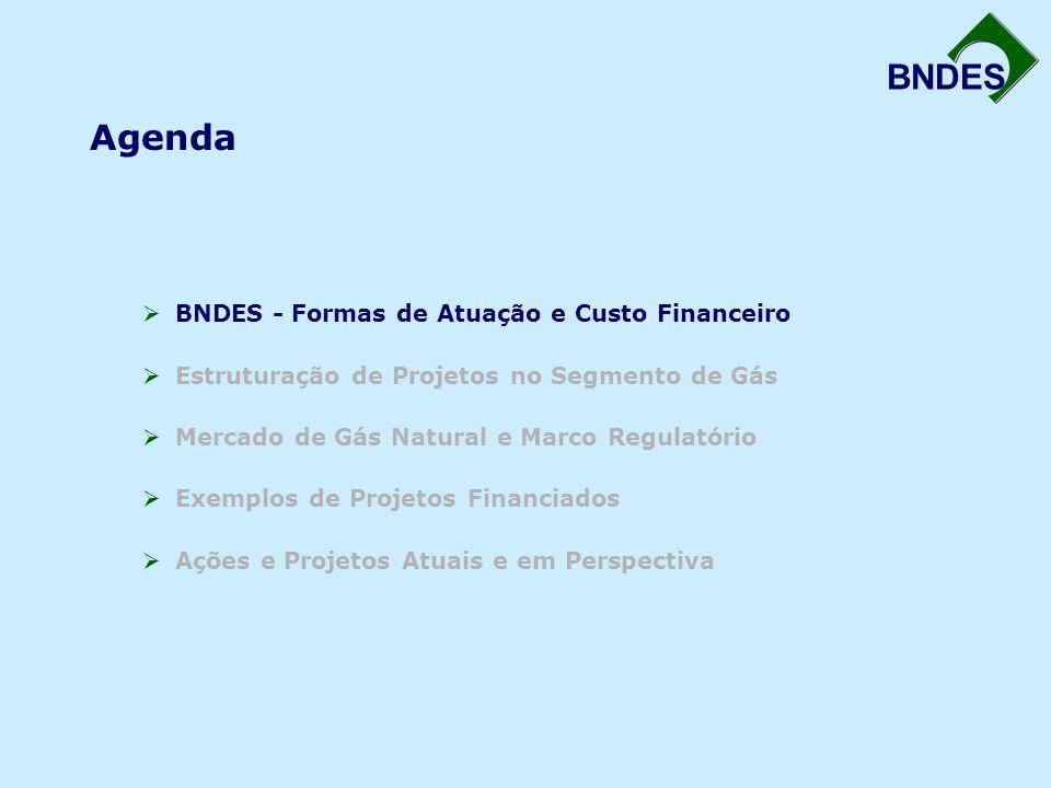 Agenda  BNDES - Formas de Atuação e Custo Financeiro  Estruturação de Projetos no Segmento de Gás  Mercado de Gás Natural e Marco Regulatório  Exemplos de Projetos Financiados  Ações e Projetos Atuais e em Perspectiva