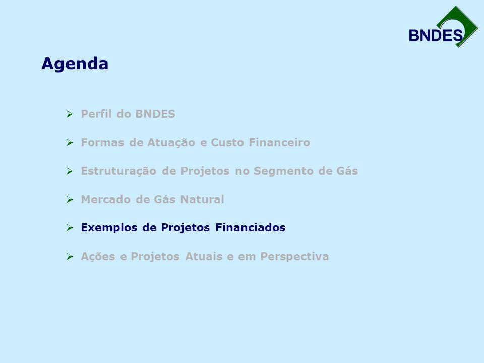 BNDES Agenda  Perfil do BNDES  Formas de Atuação e Custo Financeiro  Estruturação de Projetos no Segmento de Gás  Mercado de Gás Natural  Exemplos de Projetos Financiados  Ações e Projetos Atuais e em Perspectiva