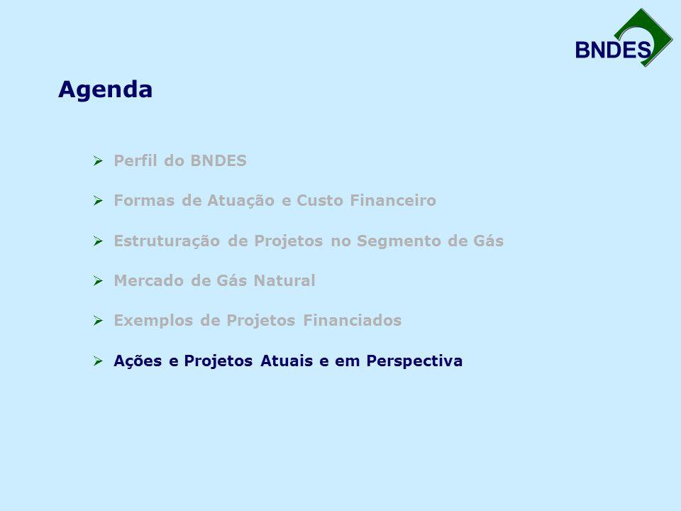 BNDES Agenda  Perfil do BNDES  Formas de Atuação e Custo Financeiro  Estruturação de Projetos no Segmento de Gás  Mercado de Gás Natural  Exemplo
