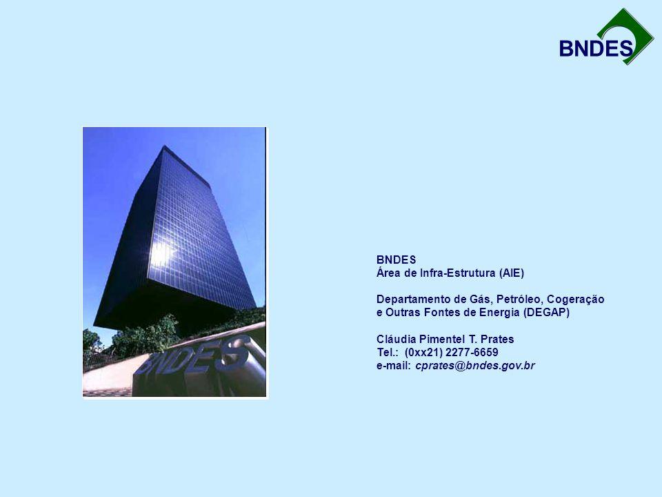 BNDES BNDES Área de Infra-Estrutura (AIE) Departamento de Gás, Petróleo, Cogeração e Outras Fontes de Energia (DEGAP) Cláudia Pimentel T. Prates Tel.:
