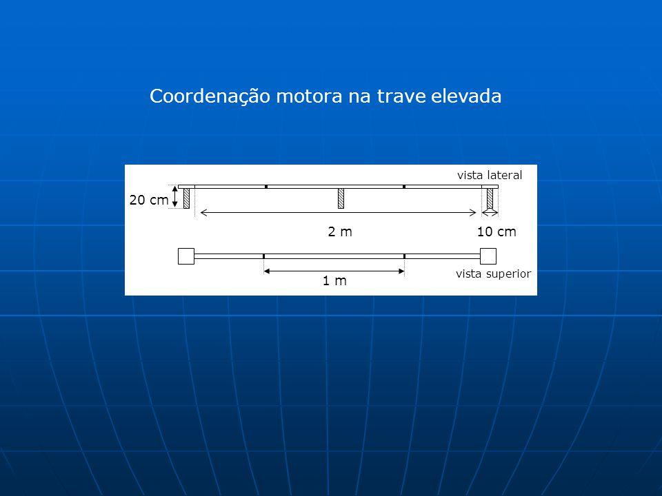 Coordenação motora na trave elevada 10 cm2 m 20 cm vista lateral vista superior 1 m