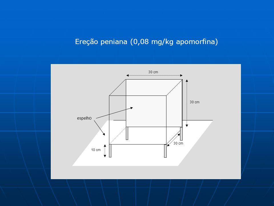 Ereção peniana (0,08 mg/kg apomorfina) 30 cm 10 cm 30 cm espelh o 30 cm