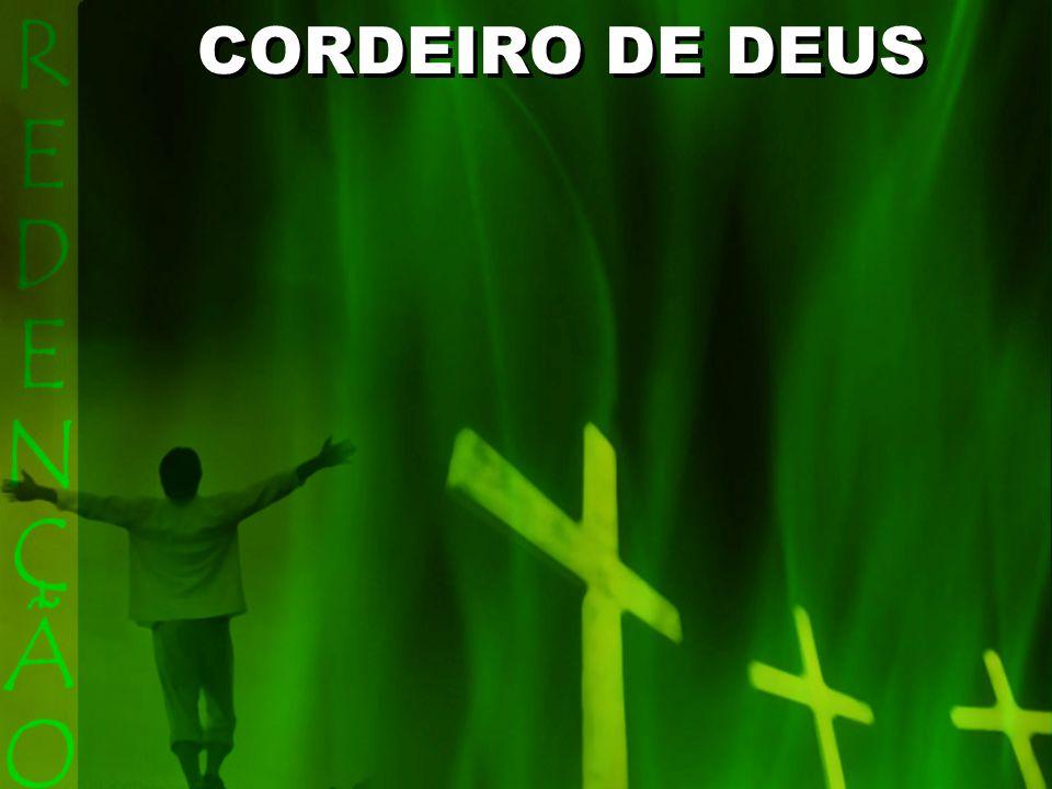 Eis o Cordeiro de Deus que a vida entregou na cruz.
