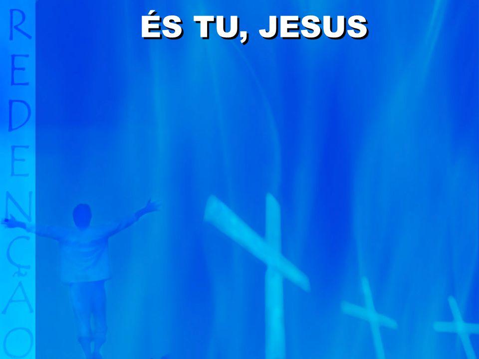 Sê exaltado, ó Cristo, Filho de Deus, o Senhor.Que toda a terra se prostre diante de Ti, Salvador.