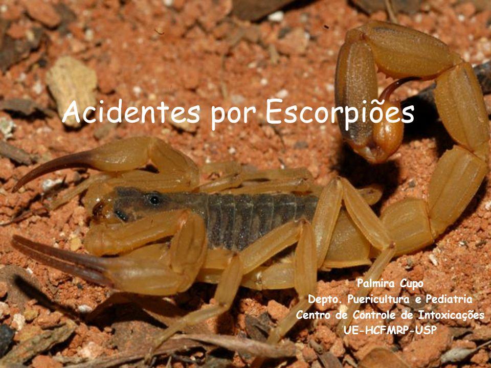 Acidentes por Escorpiões Palmira Cupo Depto.