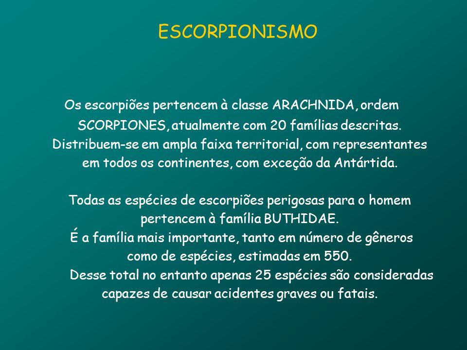Os escorpiões pertencem à classe ARACHNIDA, ordem SCORPIONES, atualmente com 20 famílias descritas.