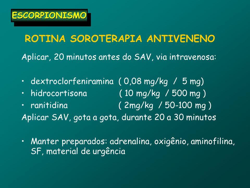 ROTINA SOROTERAPIA ANTIVENENO Aplicar, 20 minutos antes do SAV, via intravenosa: dextroclorfeniramina ( 0,08 mg/kg / 5 mg) hidrocortisona ( 10 mg/kg / 500 mg ) ranitidina ( 2mg/kg / 50-100 mg ) Aplicar SAV, gota a gota, durante 20 a 30 minutos Manter preparados: adrenalina, oxigênio, aminofilina, SF, material de urgência ESCORPIONISMOESCORPIONISMO