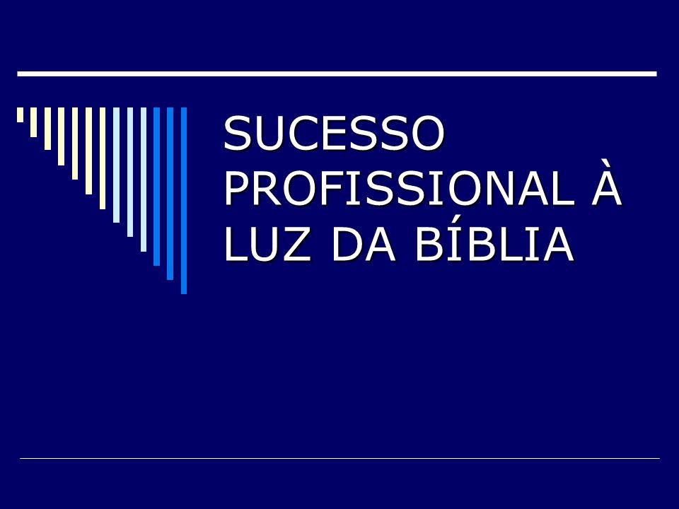 SUCESSO PROFISSIONAL À LUZ DA BÍBLIA