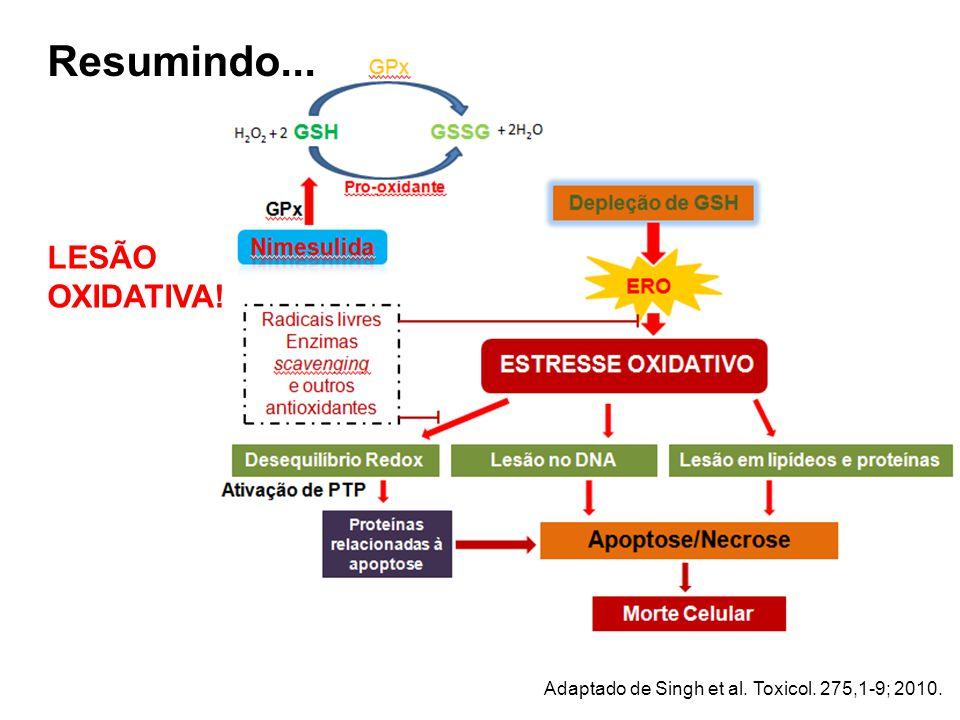 Resumindo... LESÃO OXIDATIVA! Adaptado de Singh et al. Toxicol. 275,1-9; 2010.