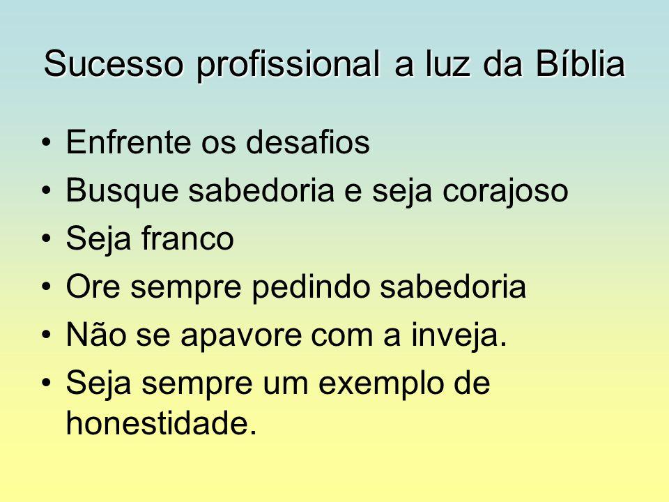 Sucesso profissional a luz da Bíblia Enfrente os desafios Busque sabedoria e seja corajoso Seja franco Ore sempre pedindo sabedoria Não se apavore com