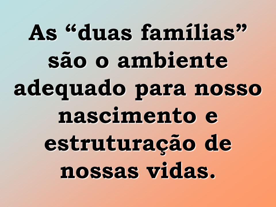 As duas famílias são o ambiente adequado para nosso nascimento e estruturação de nossas vidas.