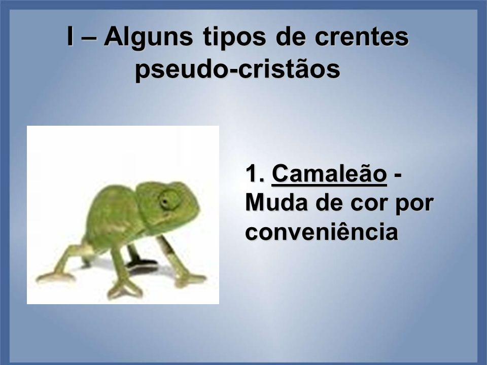 I – Alguns tipos de crentes pseudo-cristãos 1. Camaleão - Muda de cor por conveniência