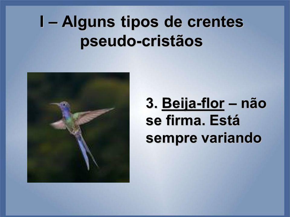 I – Alguns tipos de crentes pseudo-cristãos 3. Beija-flor – não se firma. Está sempre variando