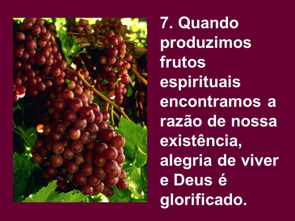 7. Quando produzimos frutos espirituais encontramos a razão de nossa existência, alegria de viver e Deus é glorificado.