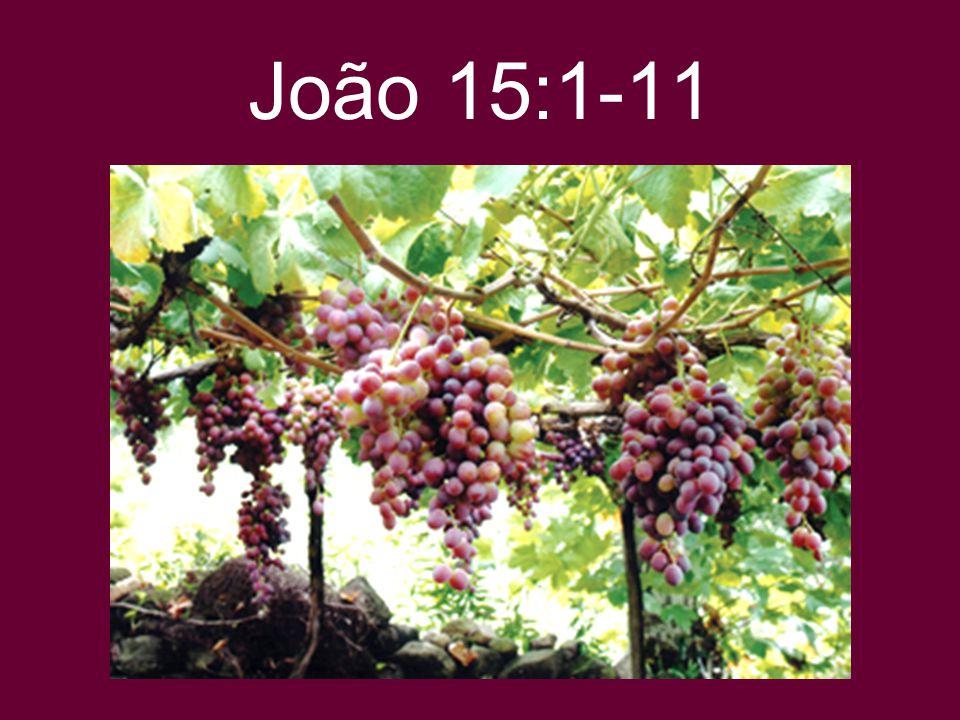 João 15:1-11