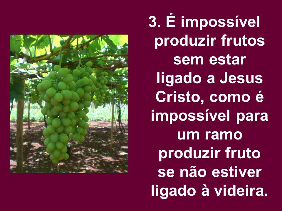 3. É impossível produzir frutos sem estar ligado a Jesus Cristo, como é impossível para um ramo produzir fruto se não estiver ligado à videira.