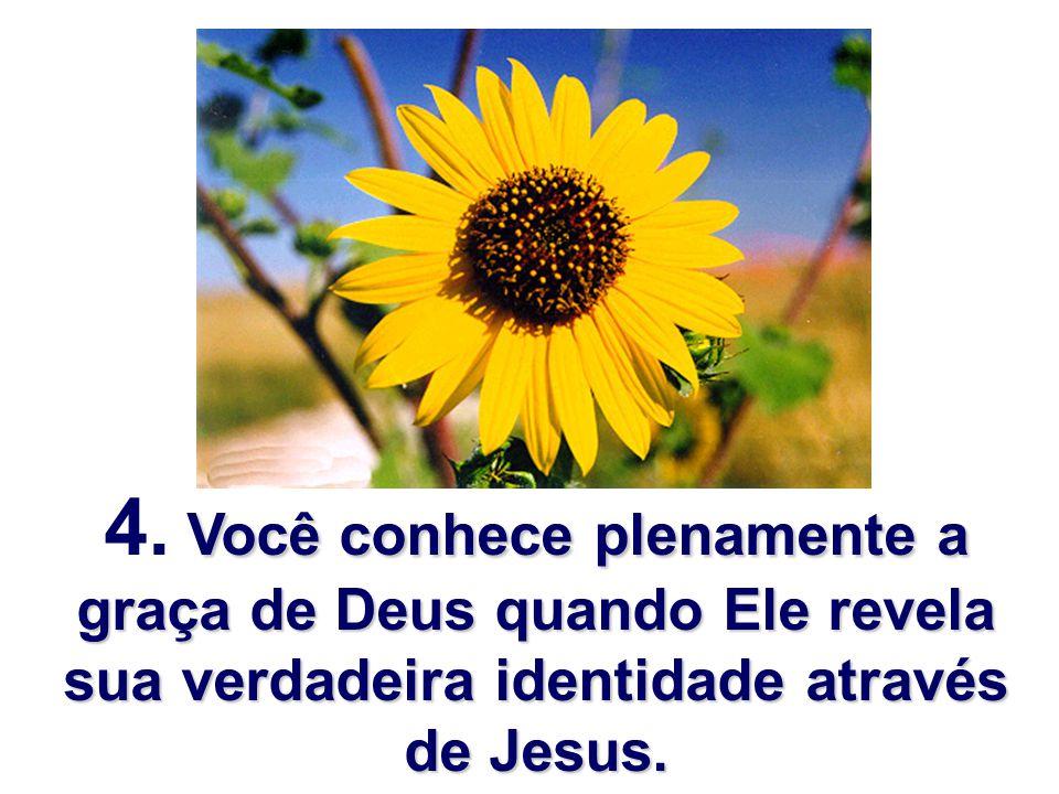 Você conhece plenamente a graça de Deus quando Ele revela sua verdadeira identidade através de Jesus. 4. Você conhece plenamente a graça de Deus quand