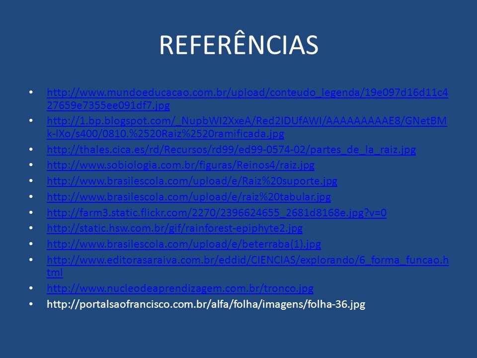 REFERÊNCIAS http://www.mundoeducacao.com.br/upload/conteudo_legenda/19e097d16d11c4 27659e7355ee091df7.jpg http://www.mundoeducacao.com.br/upload/conte