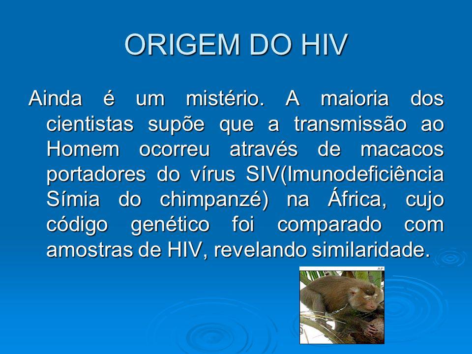 ORIGEM DO HIV Ainda é um mistério. A maioria dos cientistas supõe que a transmissão ao Homem ocorreu através de macacos portadores do vírus SIV(Imunod