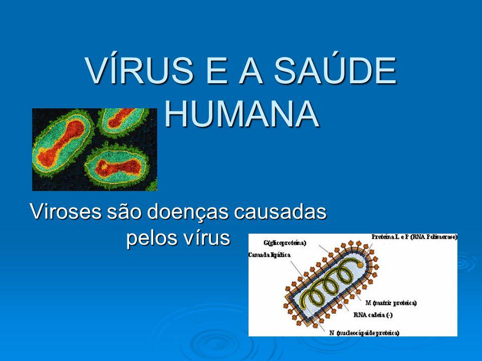 VÍRUS E A SAÚDE HUMANA Viroses são doenças causadas pelos vírus