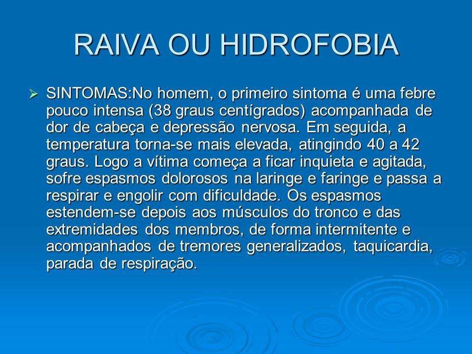 RAIVA OU HIDROFOBIA  SINTOMAS:No homem, o primeiro sintoma é uma febre pouco intensa (38 graus centígrados) acompanhada de dor de cabeça e depressão