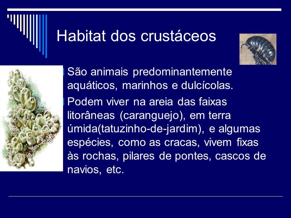 Habitat dos crustáceos  São animais predominantemente aquáticos, marinhos e dulcícolas.  Podem viver na areia das faixas litorâneas (caranguejo), em