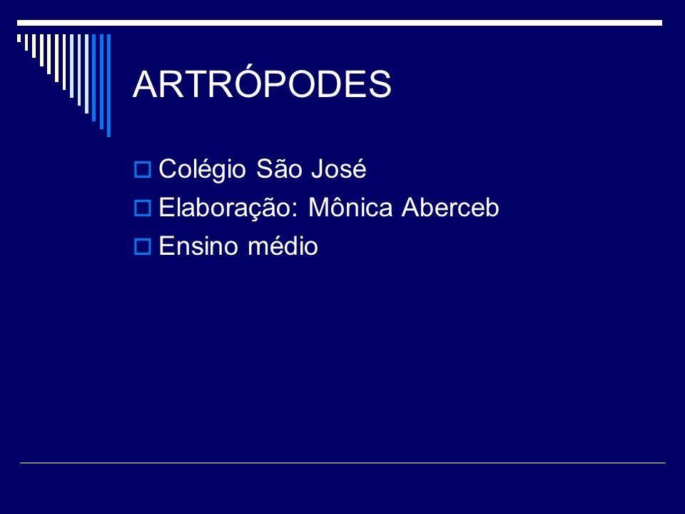 ARTRÓPODES  Colégio São José  Elaboração: Mônica Aberceb  Ensino médio