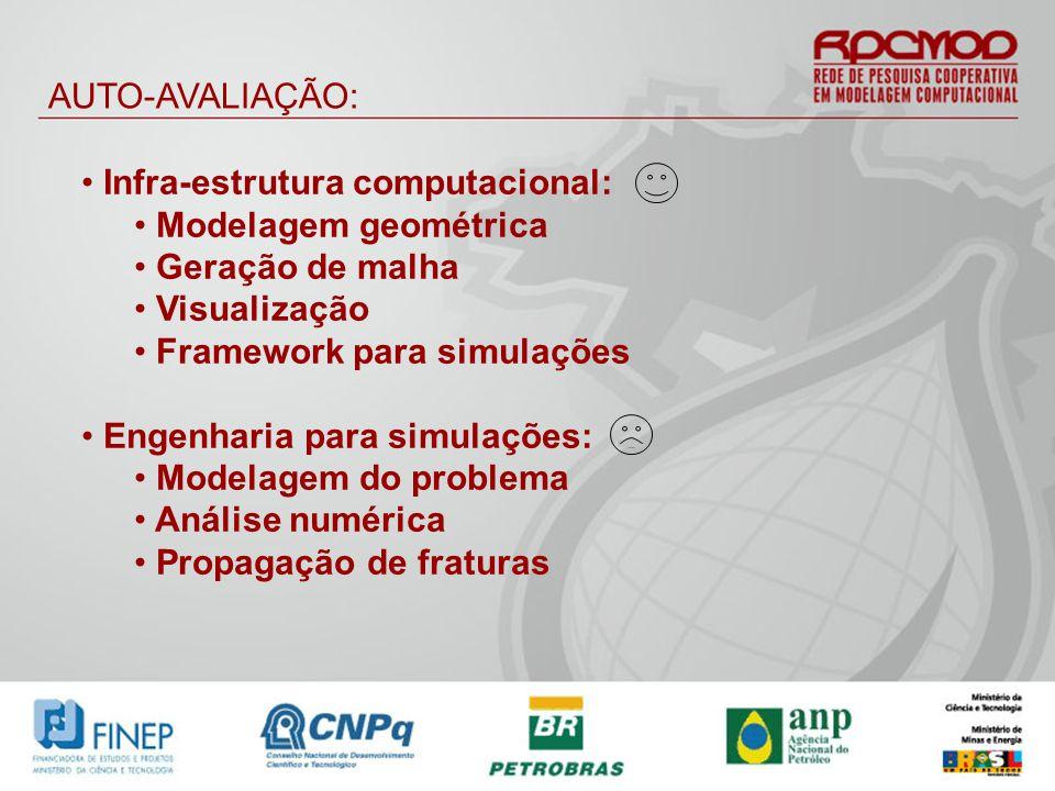 AUTO-AVALIAÇÃO: Infra-estrutura computacional: Modelagem geométrica Geração de malha Visualização Framework para simulações Engenharia para simulações