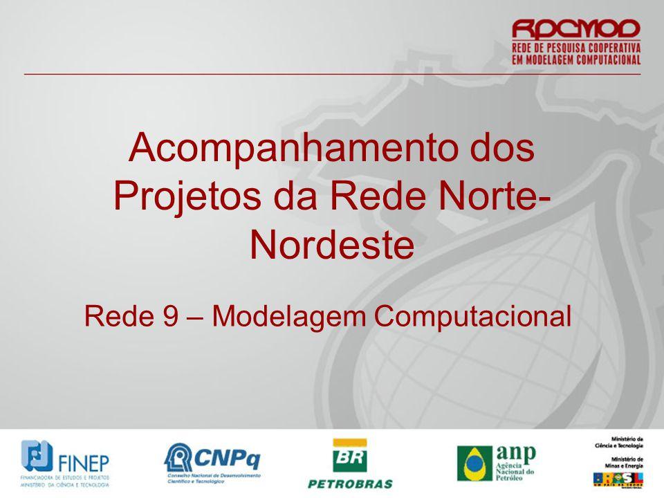 Acompanhamento dos Projetos da Rede Norte- Nordeste Rede 9 – Modelagem Computacional